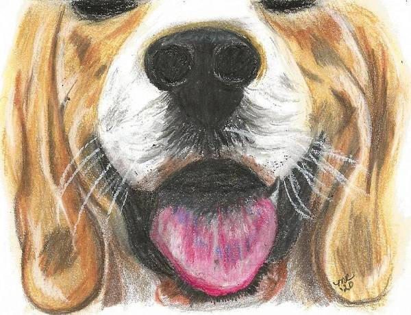 Dog Face Art Print featuring the painting Dog Face by Monica Resinger