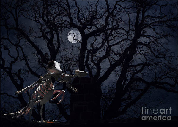 Raven Art Print featuring the photograph Raven and Rat Skeleton in Moonlight - Halloween by Colleen Cornelius