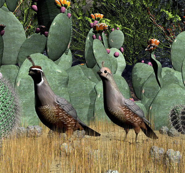 Quail Art Print featuring the digital art Desert Quail by Walter Colvin