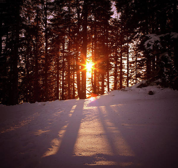 Scenics Art Print featuring the photograph Winter Sunset by Borchee