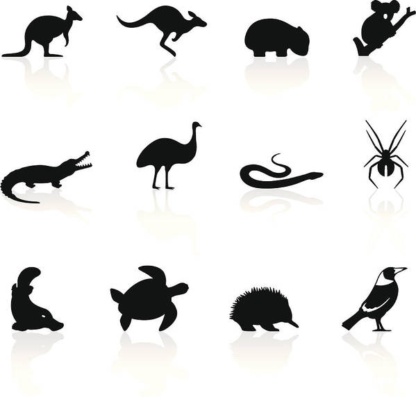 Magpie Art Print featuring the drawing Australian animal icons by Logorilla