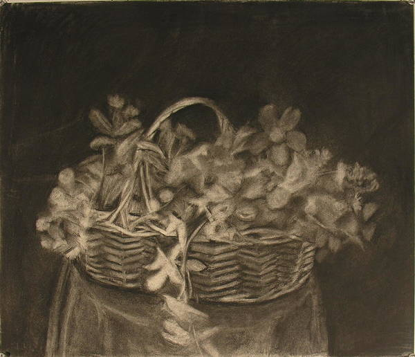 Charcoal Drawing Of Basket Of Flowers Art Print featuring the painting Basket of Flowers by Sheila Mashaw