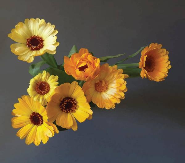 Arrangement Art Print featuring the digital art Gerbera bouquet by Adrian Bud