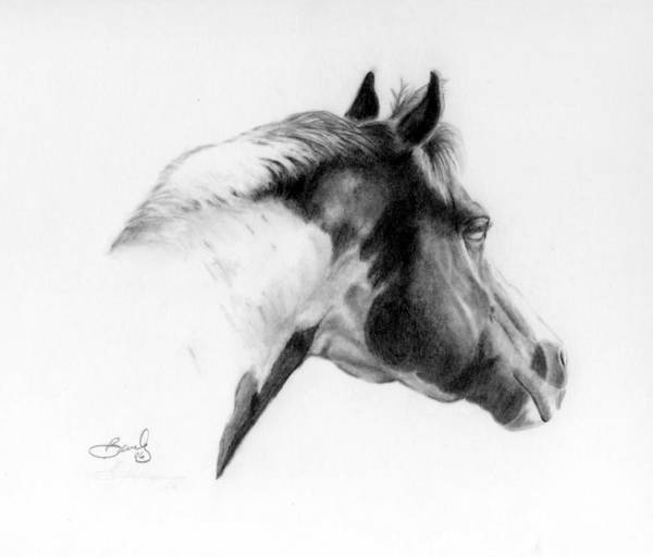 Pencil Drawing Art Print featuring the drawing Racer by Beverly Johnson