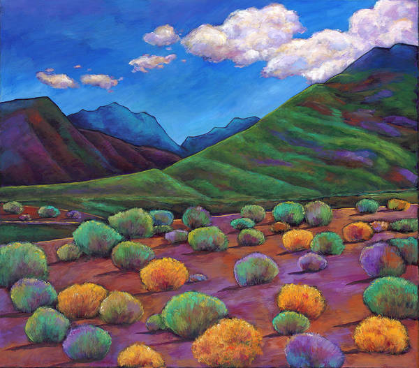 Arizona Art Print featuring the painting Desert Valley by Johnathan Harris