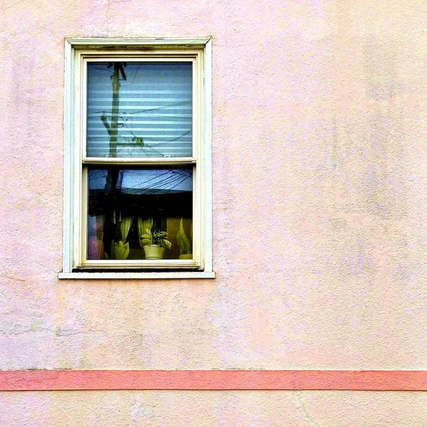 Pink Art Print featuring the photograph Reflection by Julie Gebhardt
