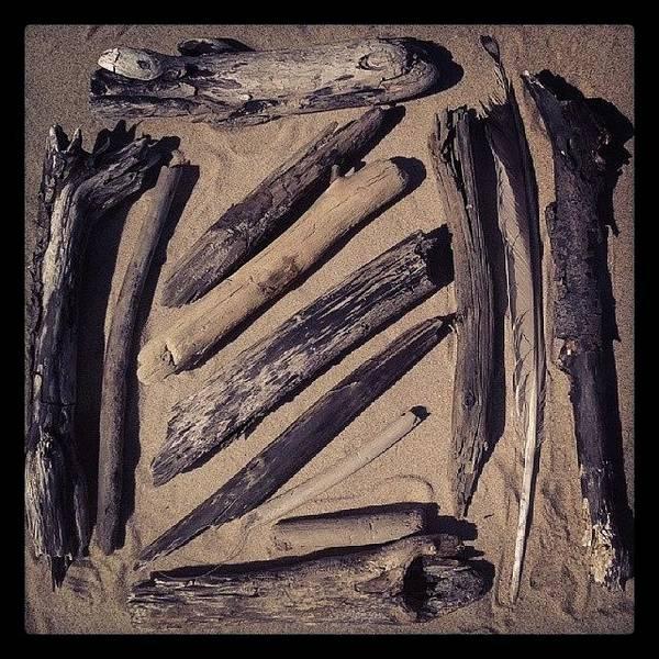 Beautiful Art Print featuring the photograph Sea Harvest by Raimond Klavins