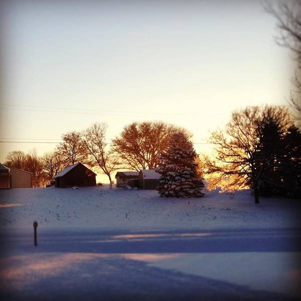 Landscape Art Print featuring the photograph A Snowy Morning by Christy Beckwith