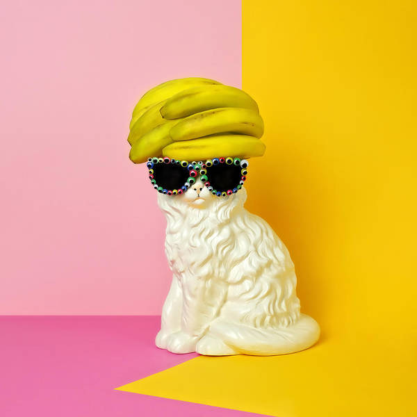 Statue Art Print featuring the photograph Cat Wearing Sunglasses And Banana Wighat by Juj Winn