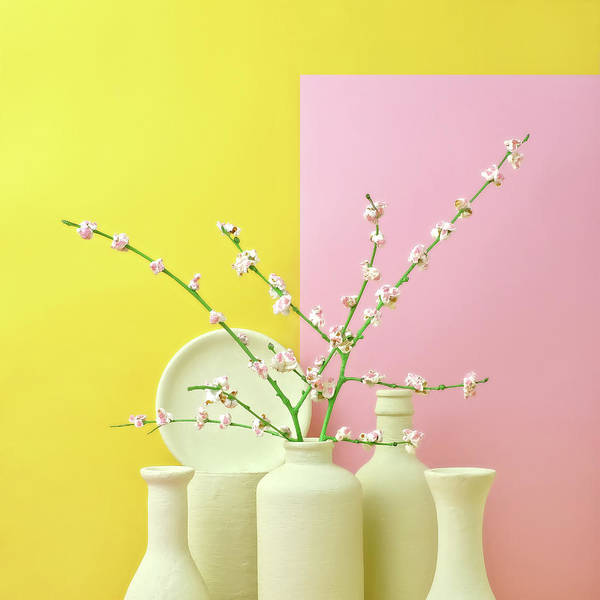 Out Of Context Art Print featuring the photograph Cherry Blossom Popcorn In Monochromatic by Juj Winn