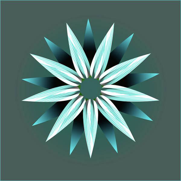 Petal Art Print featuring the digital art Flower Petals Creative Abstract Design by Raj Kamal