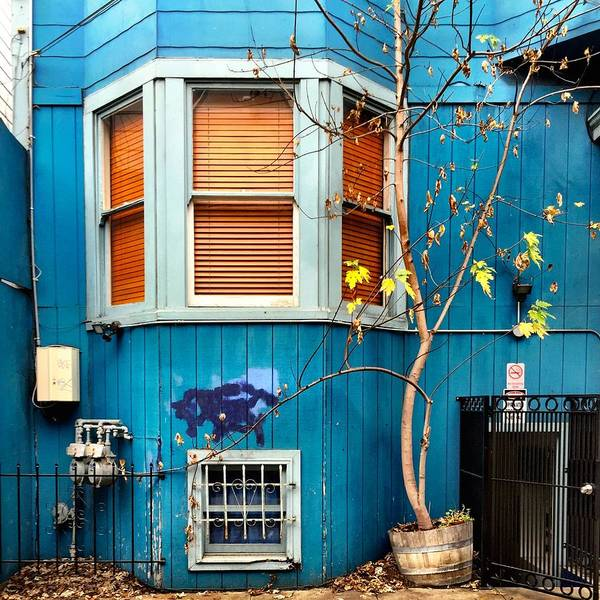 Blue House Art Print featuring the photograph Orange Blinds by Julie Gebhardt