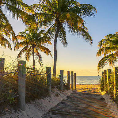 Panoramic Art Print featuring the photograph Passage to the beach at sunrise by Frederic Prochasson