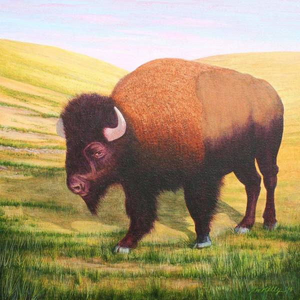 Buffalo Art Print featuring the painting The Buffalo by J W Kelly