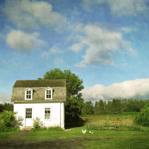 Tranquility Art Print featuring the photograph Tiny Country House by Francois Dion