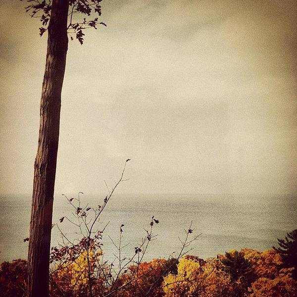 Lake Michigan Art Print featuring the photograph Calm Waters by Michelle Calkins