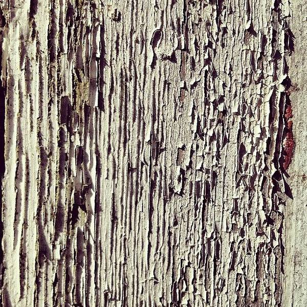 Peeling Art Print featuring the photograph Peeling Paint by Nic Squirrell