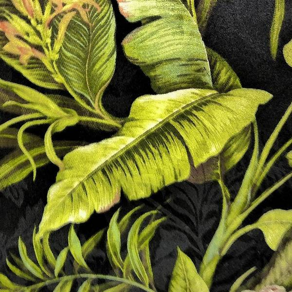 Nature Art Print featuring the photograph Tropical Leaves by Florene Welebny