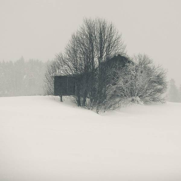 Finland Photographs Art Print featuring the photograph Winter World #2 by Nikolay Krusser