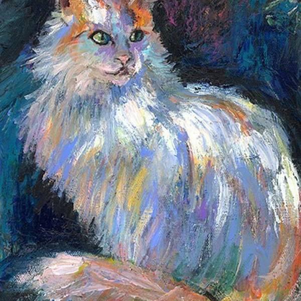 Art Art Print featuring the photograph Cat In A Sun Painting By Svetlana by Svetlana Novikova
