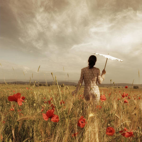 Landscape Art Print featuring the photograph Golden light 3 by Floriana Barbu