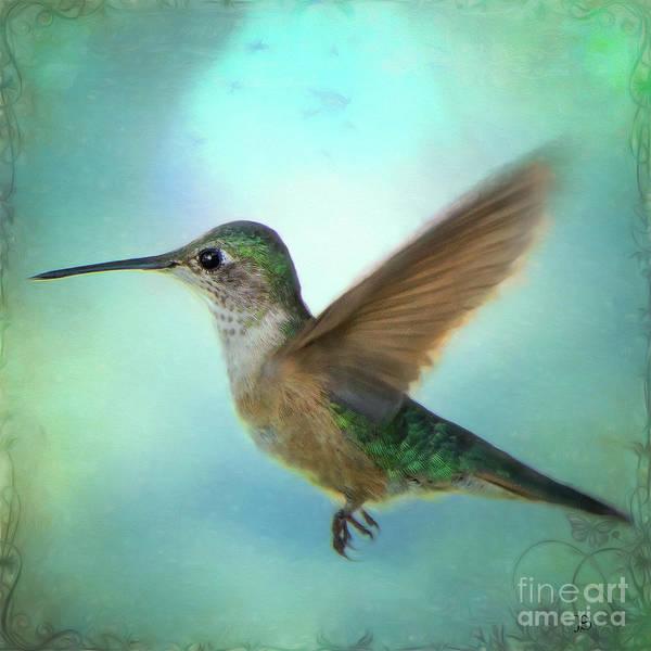 John Strong Art Print featuring the photograph Hummingbird #2 by John Strong