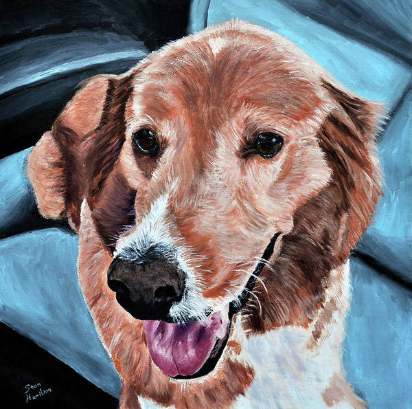 Dog Portrait Art Print featuring the painting Iggy by Stan Hamilton