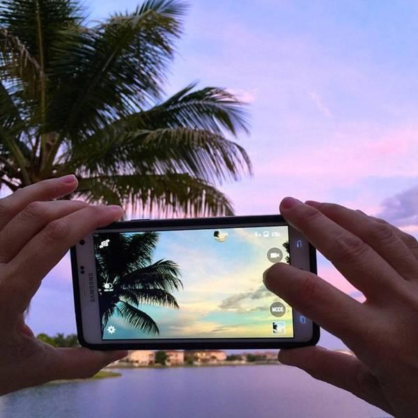 Palm Art Print featuring the photograph #juansilvaphotos #photography #mobile by Juan Silva