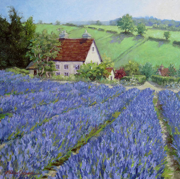 England Landscape Art Print featuring the painting Lavender Hill by L Diane Johnson