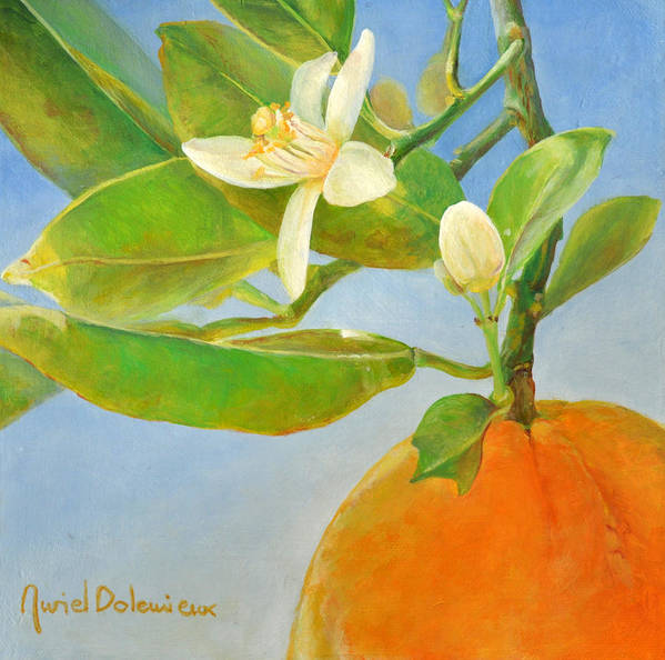 Acrylic Painting Art Print featuring the painting Orange en Coin by Muriel Dolemieux