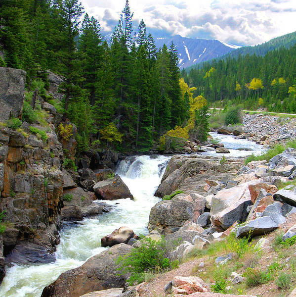 Landscape Art Print featuring the photograph Rocky Mountain Stream by John Lautermilch