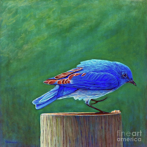 Bluebird Art Print featuring the painting Two Step by Brian Commerford