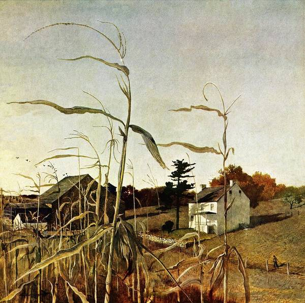 Autumn Art Print featuring the drawing Autumn Cornfield by Andrew Wyeth