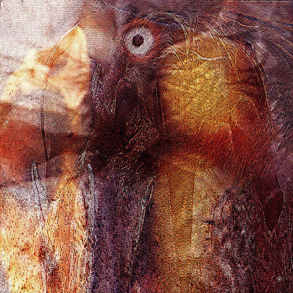 Abstract Art Print featuring the photograph Birds Eye by Tom Romeo
