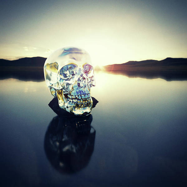 Art Art Print featuring the photograph Crystal Skull Laying On Rock In Lake by Doug Armand
