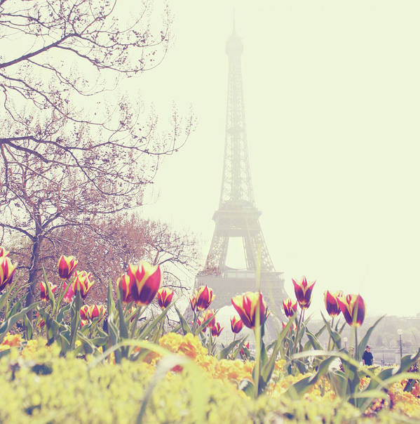 Built Structure Art Print featuring the photograph Eiffel Tower With Tulips by Gabriela D Costa