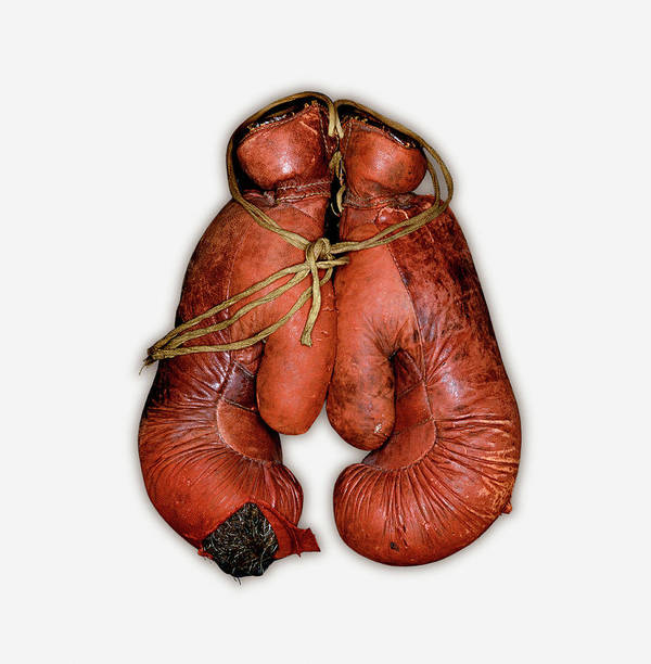 White Background Art Print featuring the photograph Pair Of Boxing Gloves, Close-up by John Rensten
