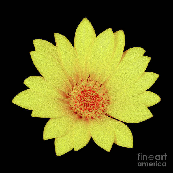 Floral Art Print featuring the digital art Sun Flower by Kenneth Montgomery