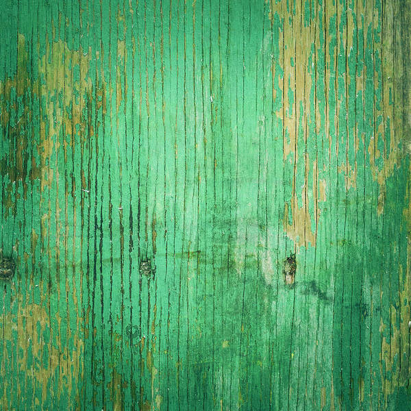 Unhygienic Art Print featuring the photograph Wooden Texture by Thepalmer