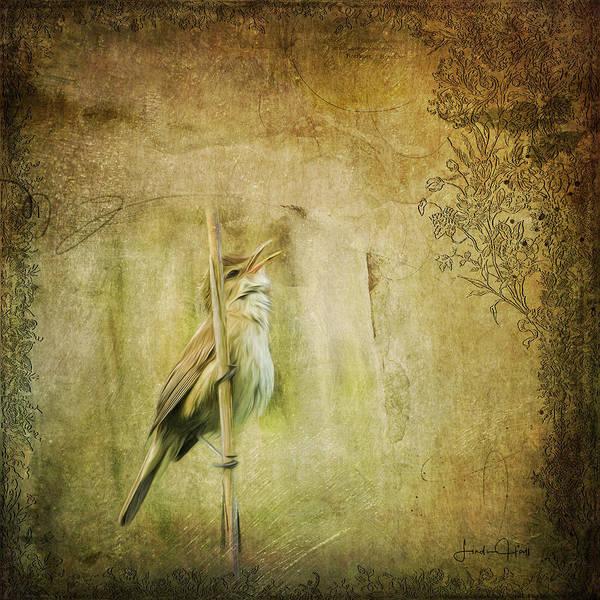 Digital Art Print featuring the digital art Australian Reed Warbler by Linda Lee Hall