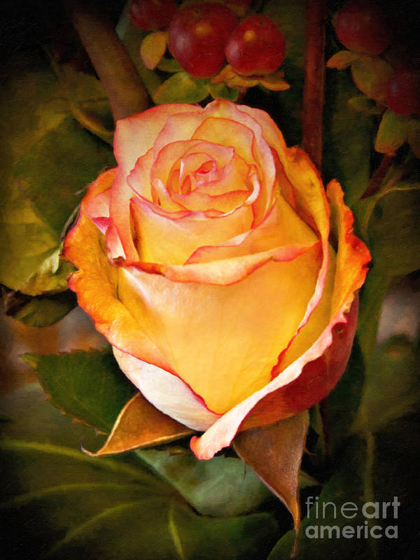 Rose Art Print featuring the painting Romantic Rose by Lutz Baar
