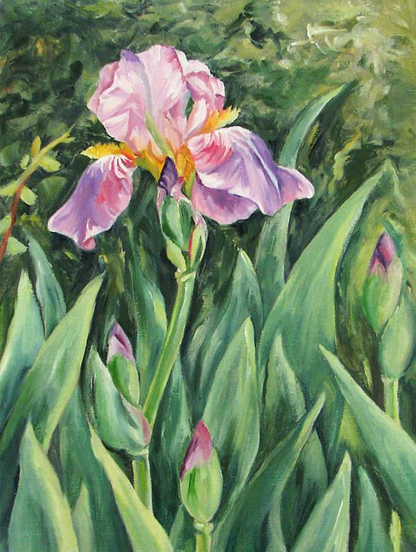 Irises Art Print featuring the painting Irises by Cheryl Pass