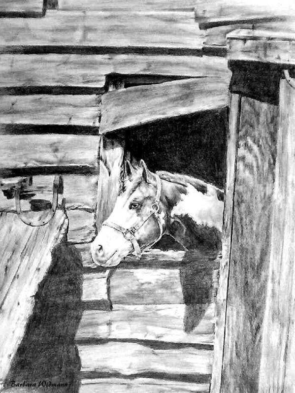 Horses Art Print featuring the drawing Strawberry by Barbara Widmann