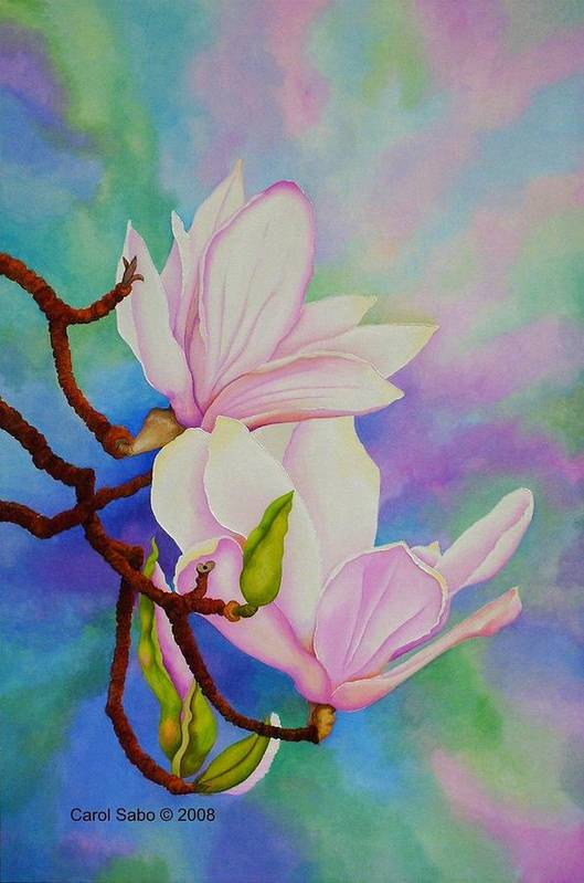 Pastels Art Print featuring the painting Spring Magnolia by Carol Sabo
