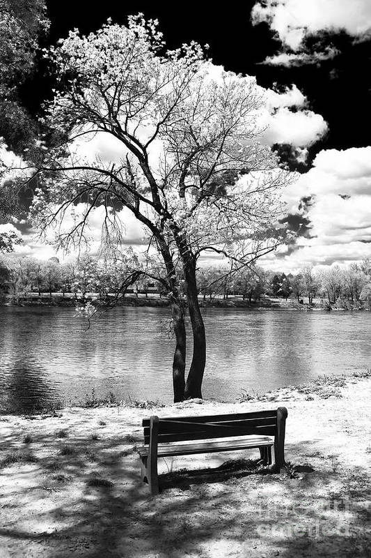 Along The River Art Print featuring the photograph Along The River by John Rizzuto