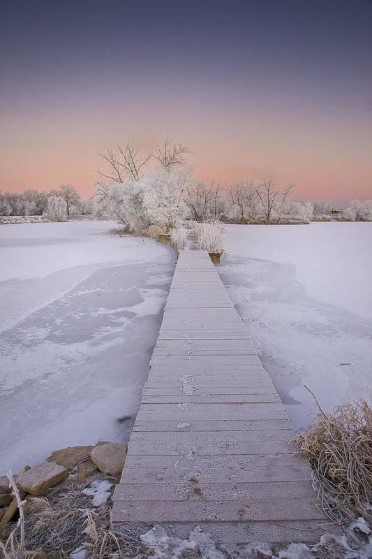 Winter Art Print featuring the photograph Bridging The Cold by Michael Van Beber