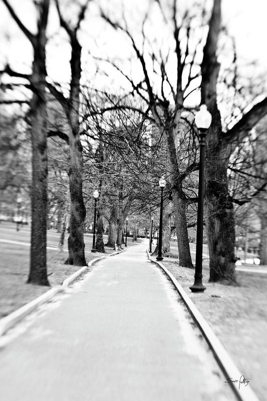 Black & White Art Print featuring the photograph Commons Park Pathway by Scott Pellegrin