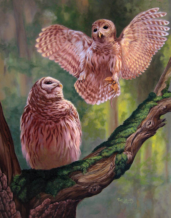 Owls Art Print featuring the painting Bringing Home Dinner by Pat Lewis
