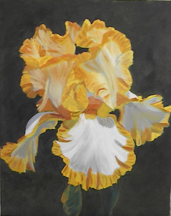 Floral Art Print featuring the painting Trimmed In Yellow 2 by Robert Tower
