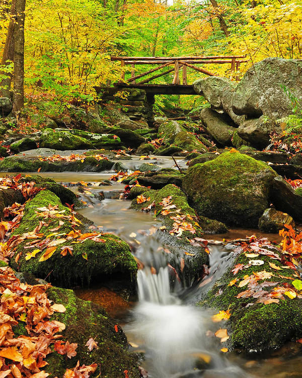 Nature Art Print featuring the photograph Foot Bridge- Macedonia Brook State Park by Thomas Schoeller